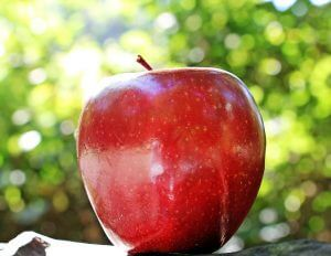 apple - effects of tooth loss